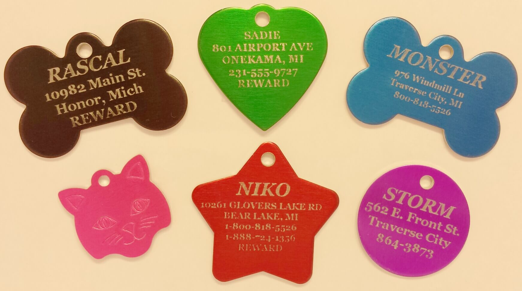 pet tags for our beloved animals   overnight pet tags