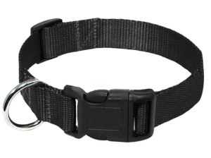 black nylon buckle dog and cat collar