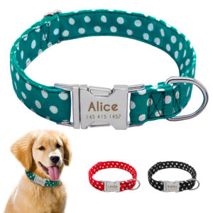 teal polka dot nylon collar with custom engraved buckle