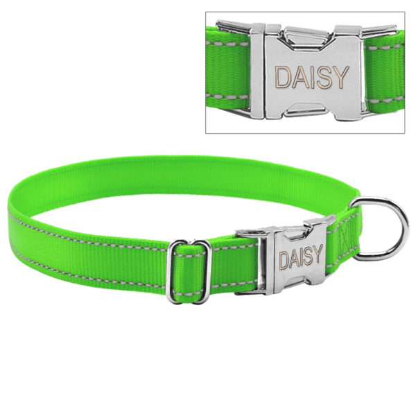 green collar with custom engraved buckle